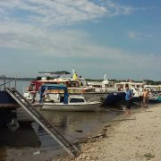 Stari Banovci: peta regata Reka