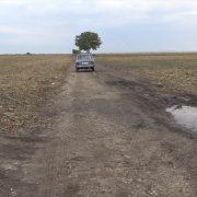 Za bezbedno obavljanje poljoprivrednih radova: U toku radovi na uređenju atarskih puteva