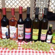 Irig: Otvoren konkurs za izbor najbolje pesme o vinu
