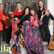 Čaj u 8: Koncert grupe Ođila u Rumi
