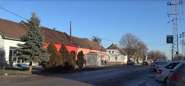 Krčedin: Selo koje čuva uspomenu na velike ličnosti – Ignjat Bokur i manifestacija Julski dani