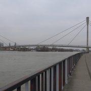 Sremska Mitrovica: Sava u blagom porastu