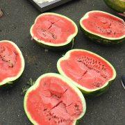 Dobrinci: Najteža lubenica Radoslava Radovca