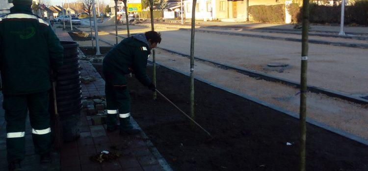 Sremska Mitrovica: Ozelenjavanje Železničke ulice