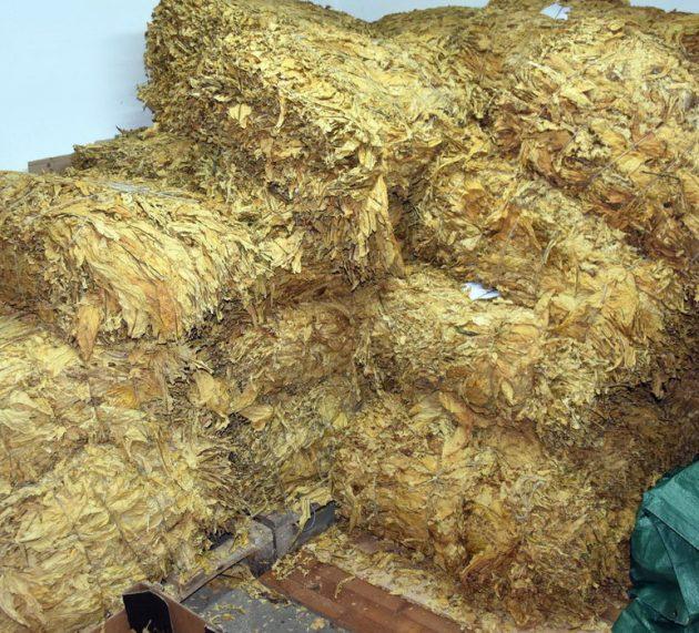 Zaplenjeno više od 1,5 tona duvana