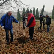 U parku Gerontološkog centra u Rumi 90 novih sadnica