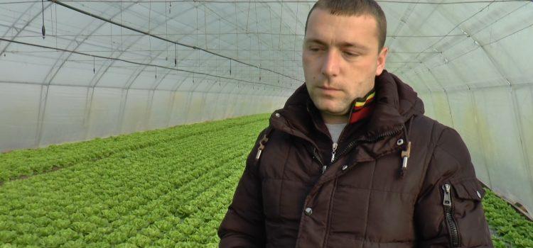 Proizvodnja u kontrolisanim uslovima – budućnost mladih poljoprivrednika
