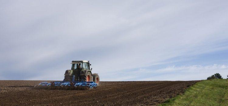U Irigu drugi krug licitacije za zakup zemljišta u državnoj svojini