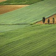 Podrška poljoprivredi u rumskoj opštini