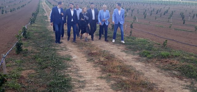 Pokrajinski sekretar za poljoprivredu, vodoprivredu i šumarstvo dr Vuk Radojević u poseti inđijskoj opštini