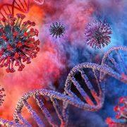 U Staroj Pazovi, Pećincima i Inđiji povećan broj zaraženih korona virusom