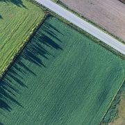 Ove godine manja površina zemljišta raspoloživog za licitaciju
