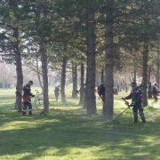 Prolećno uređenje Sremske Mitrovice (VIDEO)