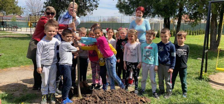 """JKP """"Komunalije"""" obeležilo Dan planete Zemlje (VIDEO)"""