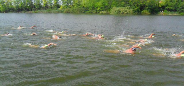Plivački maraton u Sremskoj Mitrovici