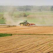 Inđija: Raspisan Javni konkurs za korišćenje poljoprivrednog zemljišta