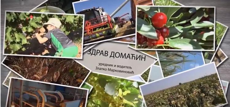 "Emisija ""Zdrav domaćin"": Agencija za ruralni razvoj Grada Sremska Mitrovica podrška mladim poljoprivrednicima"