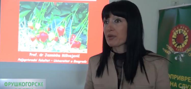 Održano savetovanje u Poljoprivrednoj stanici u Rumi: Srem pogodan za gajenje jagoda