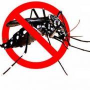 Zaprašivanje komaraca u Inđiji
