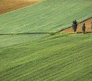 Opština Ruma nastavlja sa programom podrške poljoprivrednicima
