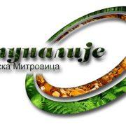 Rezultati analize savske vode u Mitrovici zadovoljavajući
