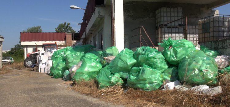 Akcija prikupljanja ambalažnog pesticidnog otpada nastavlja se u pećinačkoj opštini