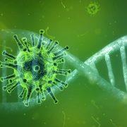 U rumskoj opštini korona virusom zaražen 641 pacijent