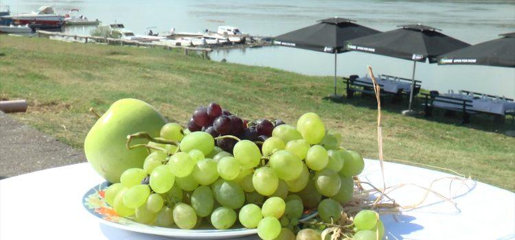 Banoštorski dani grožđa